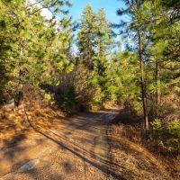 deer-lake-washington property-view-